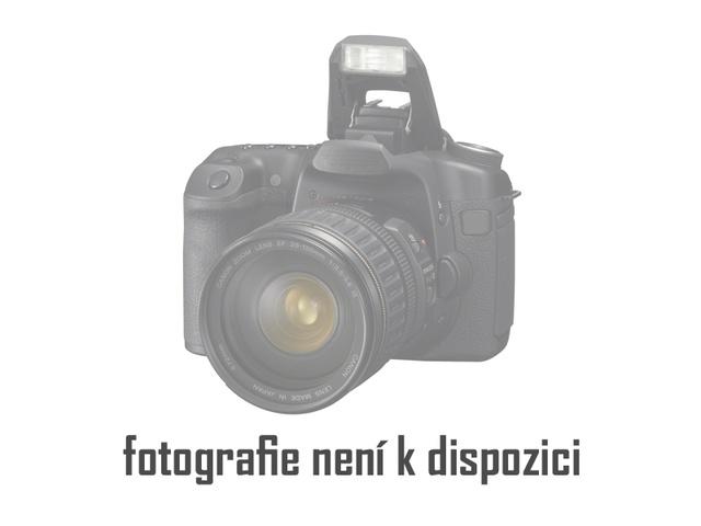 Ing. Pavel Musil