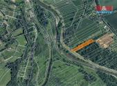 Prodej - pozemek, les, 7006 m²
