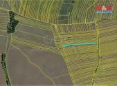 Prodej - pozemek, zemědělská půda, 2503 m²