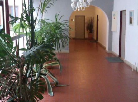 IMAG0091 | Pronájem - kanceláře, 21 m²
