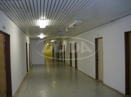Obrázek k zakázce č.: 542283 | Pronájem - kanceláře, 20 m²