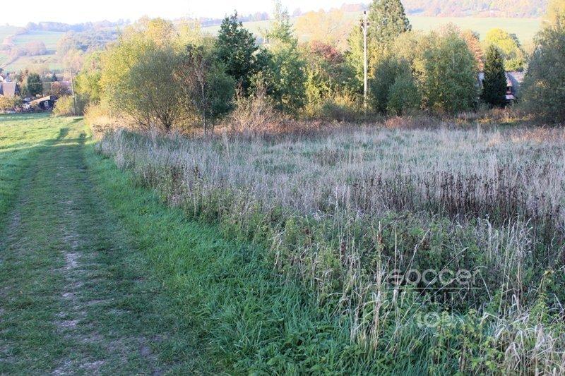 Prodej pozemku ke komerčnímu užití (výroba,skladování) v Jiřetíně pod Jedlovou