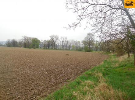 Prodej - pozemek, zemědělská půda, 1109 m²