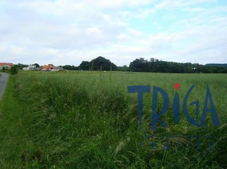 Prodej - pozemek, zemědělská půda, 5629 m²
