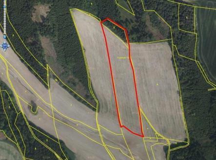 Pronájem - pozemek, zemědělská půda, 2599 m²