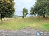 Prodej - pozemek, trvalý travní porost, 981 m²