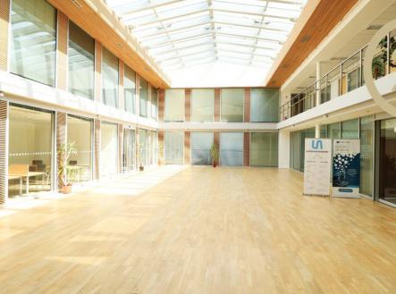 IMG_6936 | Pronájem - kanceláře, 500 m²