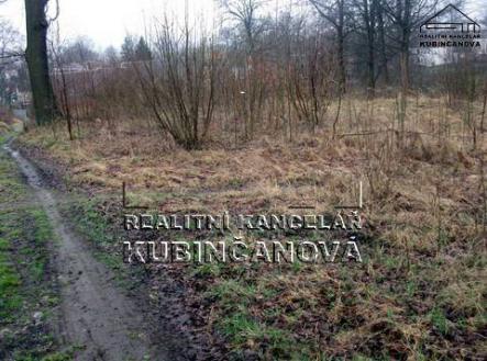 Bez popisku | Prodej - pozemek, trvalý travní porost, 2157 m²
