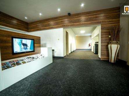 Pronájem - kanceláře, 50 m²