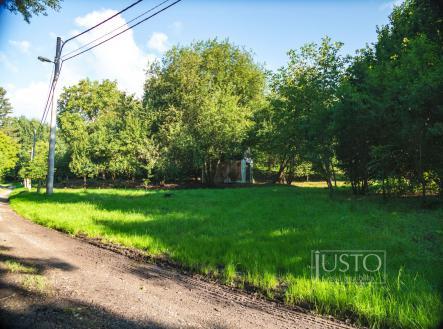 Prodej - pozemek pro bydlení, 3099 m²