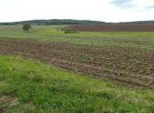 Prodej - pozemek, trvalý travní porost, 12592 m²